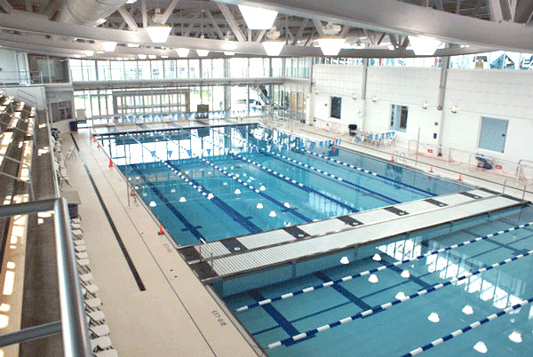 Competition Paddock Pool Equipment Company